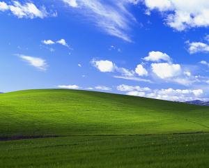 Windows XP Bliss Wallpaper Los Carneros, California, USA